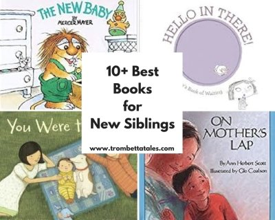 10+ Best Books for New Siblings