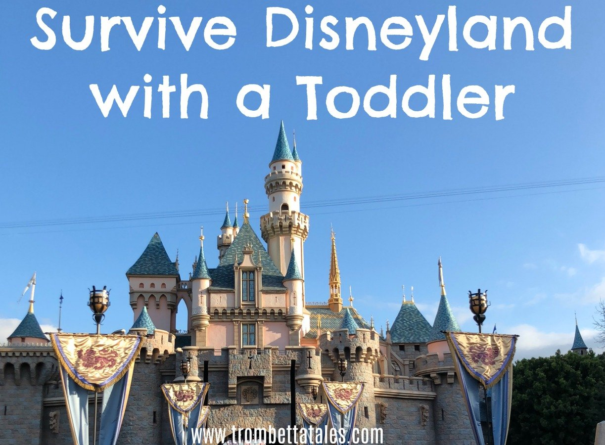 Tips to Survive Disneyland with a Toddler